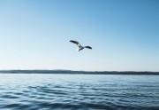Aukščiausias žmogaus tikslas – dvasinė praktika
